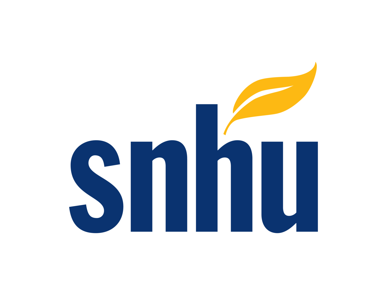 Southern New Hampshire University - Technology